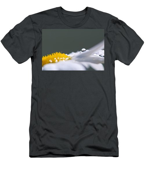 Grey And Yellow Daisy Men's T-Shirt (Athletic Fit)