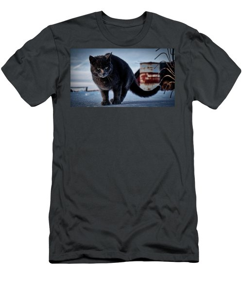 Grey Cat, Grey Mood Men's T-Shirt (Athletic Fit)