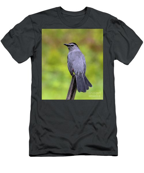 Men's T-Shirt (Athletic Fit) featuring the photograph Grey Catbird by Debbie Stahre