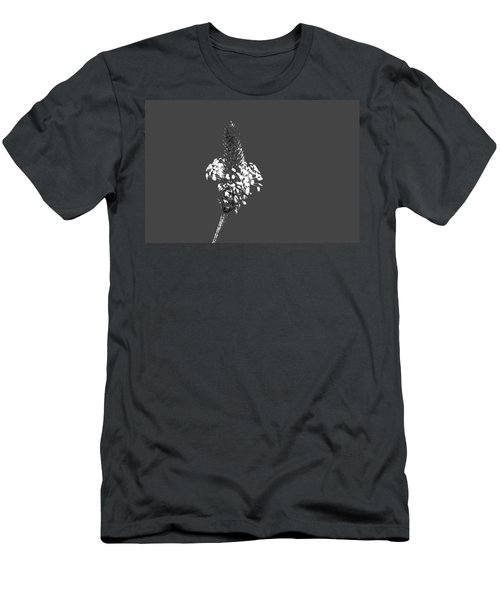 Grey Plaintain Men's T-Shirt (Athletic Fit)