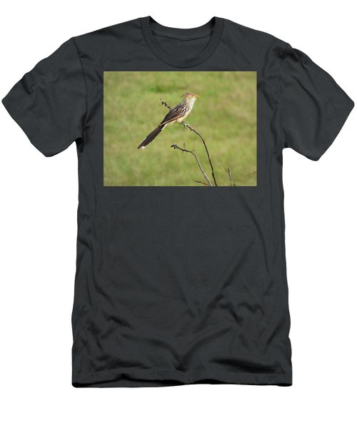 Guira Cuckoo Men's T-Shirt (Athletic Fit)