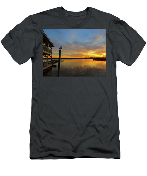 Gull Sunset Men's T-Shirt (Athletic Fit)