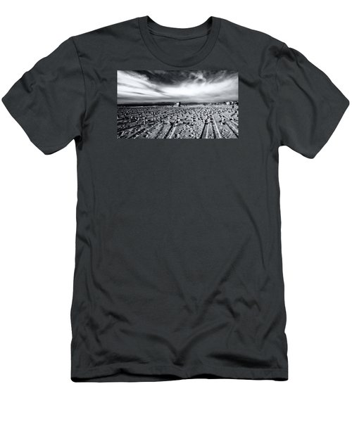 Men's T-Shirt (Athletic Fit) featuring the photograph Gulls On Beach by Michael Hope