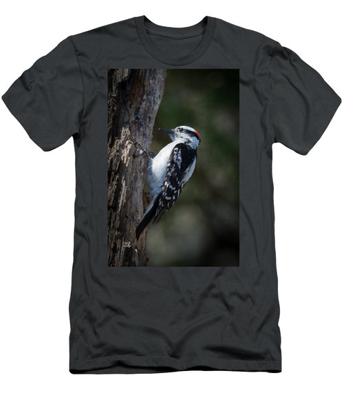 Downy Woodpecker Men's T-Shirt (Slim Fit) by Kenneth Cole