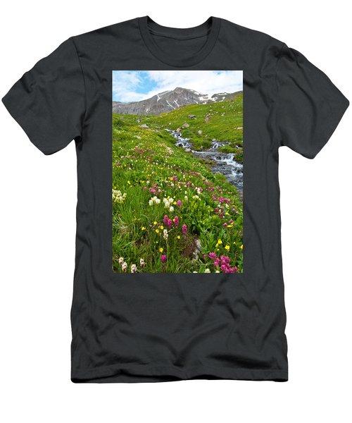 Handie's Peak And Alpine Meadow Men's T-Shirt (Athletic Fit)