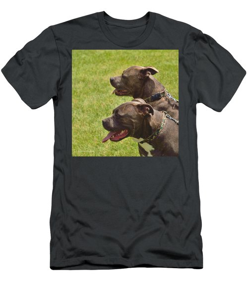 Handsome Pit Bulls Men's T-Shirt (Athletic Fit)