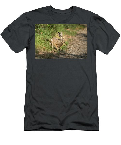 Hare In The Woods Men's T-Shirt (Athletic Fit)