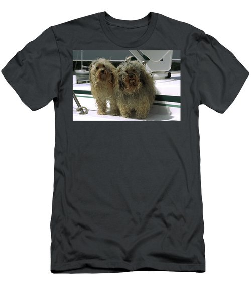 Men's T-Shirt (Slim Fit) featuring the photograph Havanese Dogs by Sally Weigand