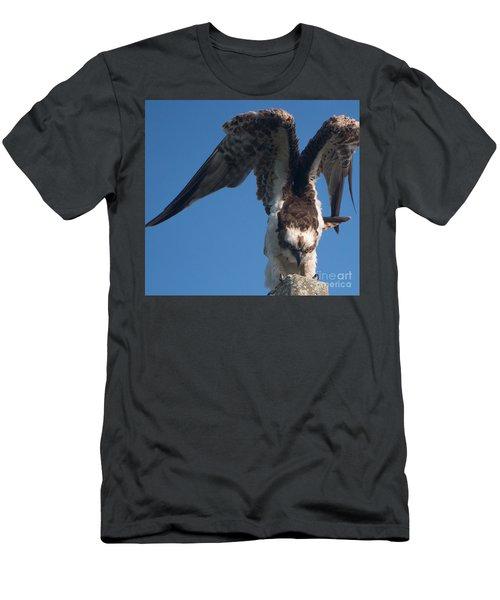 Hawk Prepares For Flight Men's T-Shirt (Athletic Fit)
