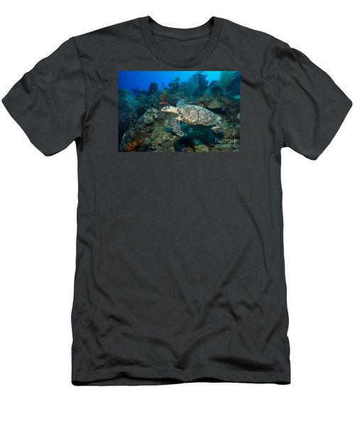 Men's T-Shirt (Slim Fit) featuring the photograph Hawksbill Haunt by Aaron Whittemore