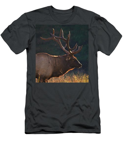 Head Of The Herd Men's T-Shirt (Athletic Fit)