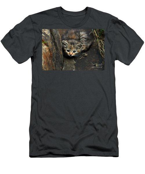 Hello Little Kitty Men's T-Shirt (Slim Fit) by Eric Liller