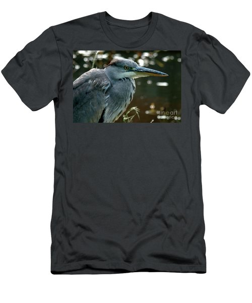 Herons Looking At You Kid Men's T-Shirt (Athletic Fit)