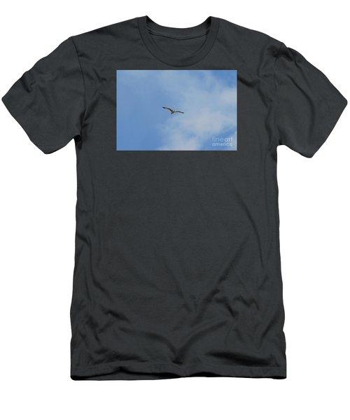 Herring Sea Gull 20120409_241a Men's T-Shirt (Slim Fit) by Tina Hopkins
