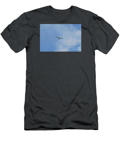 Herring Sea Gull 20120409_241a Men's T-Shirt (Athletic Fit)