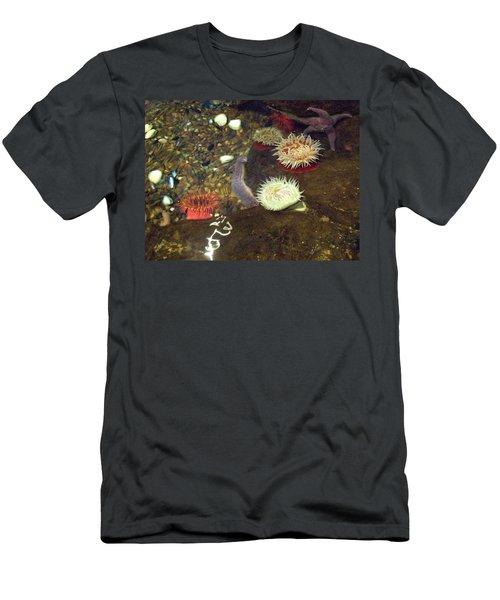 Hidden Writings Men's T-Shirt (Athletic Fit)