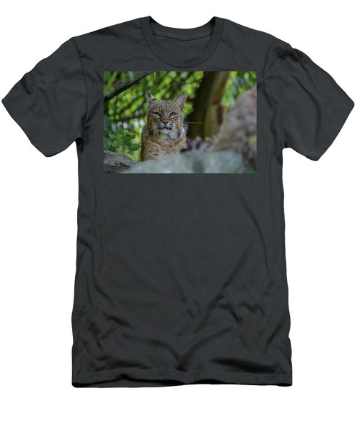 Hiding In The Rocks Men's T-Shirt (Athletic Fit)