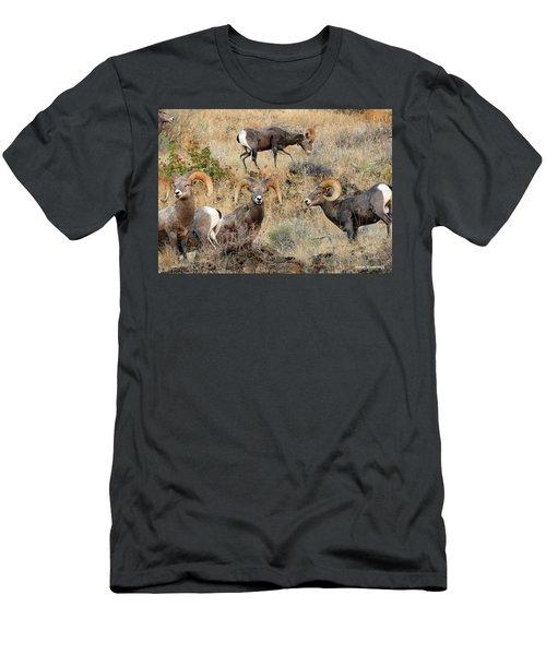 Hierarchy Men's T-Shirt (Slim Fit) by Steve Warnstaff