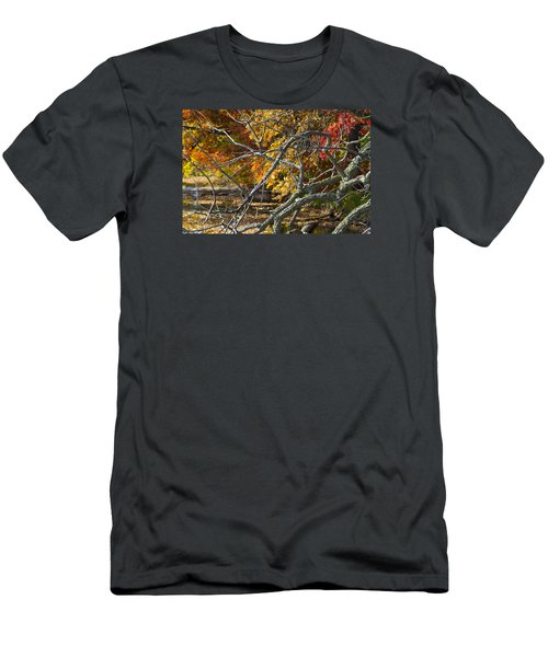 Highly Textured Branches Against Autumn Trees Men's T-Shirt (Athletic Fit)