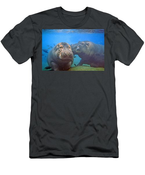 Hippos In Love Men's T-Shirt (Athletic Fit)