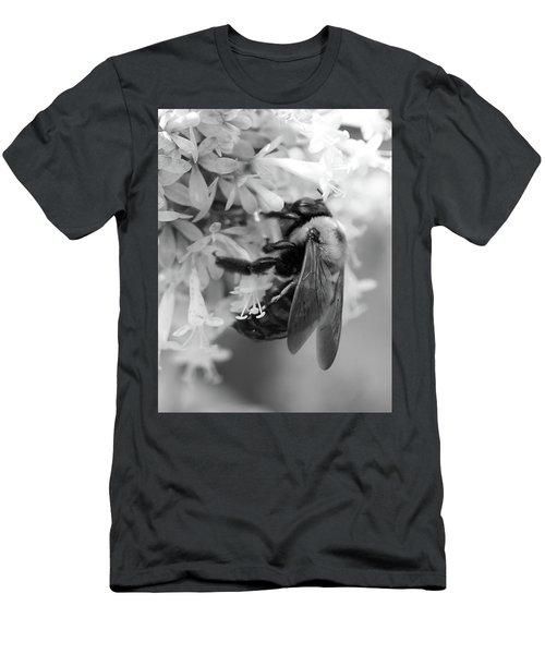Honey Bee Men's T-Shirt (Athletic Fit)