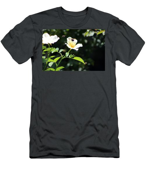 Honey Bees In Flight Over White Rose Men's T-Shirt (Athletic Fit)