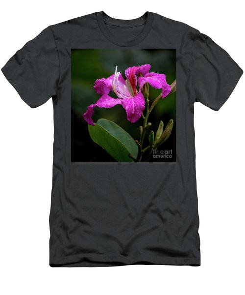 Hong Kong Orchid Men's T-Shirt (Athletic Fit)