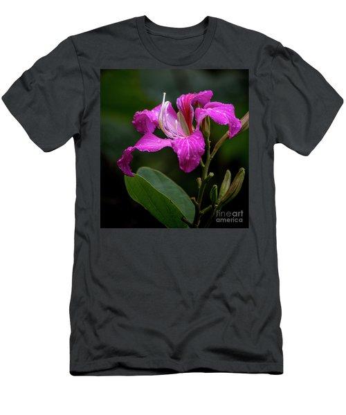 Hong Kong Orchid Men's T-Shirt (Athletic Fit)