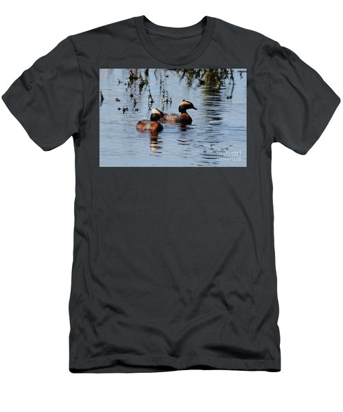 Horned Grebe Couple Men's T-Shirt (Athletic Fit)