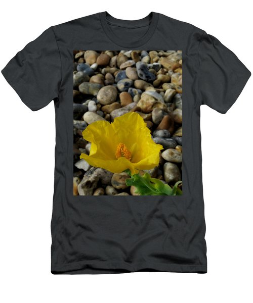 Horned Poppy And Pebbles Men's T-Shirt (Athletic Fit)