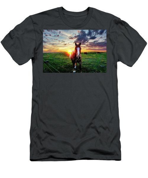 Horses At Sunset Men's T-Shirt (Athletic Fit)