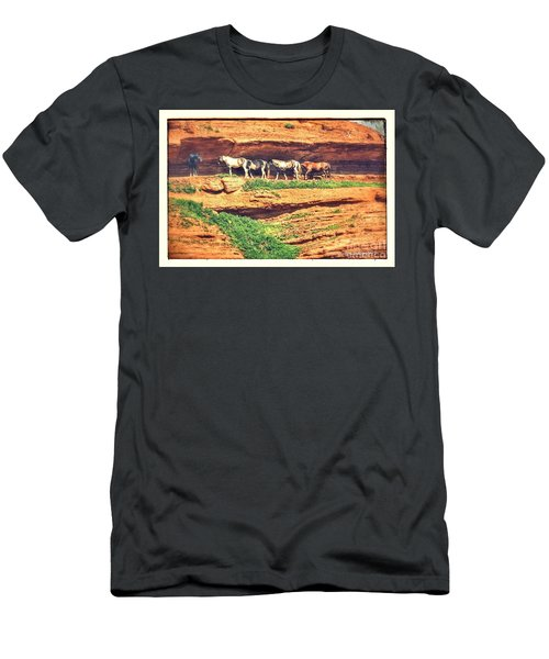 Horses Basking In The Sun Men's T-Shirt (Athletic Fit)