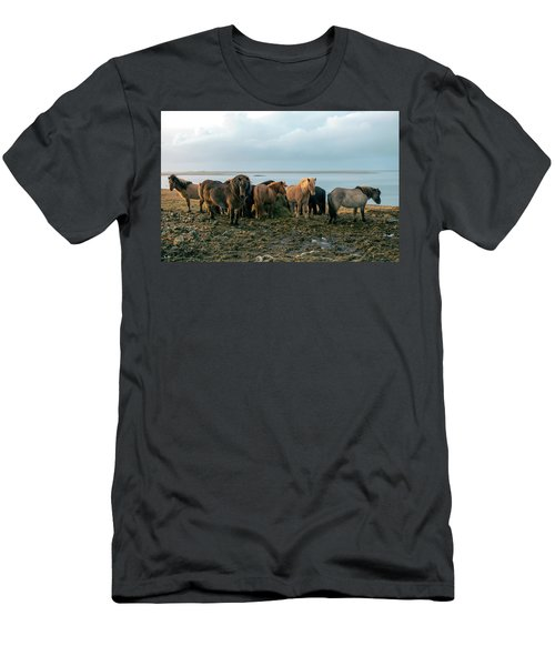 Horses In Iceland Men's T-Shirt (Slim Fit) by Dubi Roman