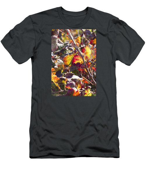 Men's T-Shirt (Slim Fit) featuring the photograph Hot Autumn Colors In The Vineyard 02 by Arik Baltinester