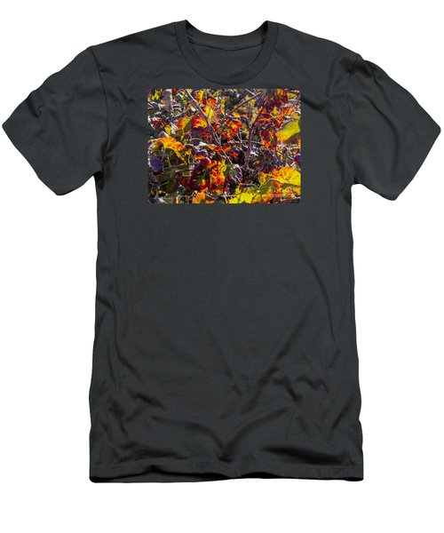 Men's T-Shirt (Slim Fit) featuring the photograph Hot Autumn Colors In The Vineyard 03 by Arik Baltinester