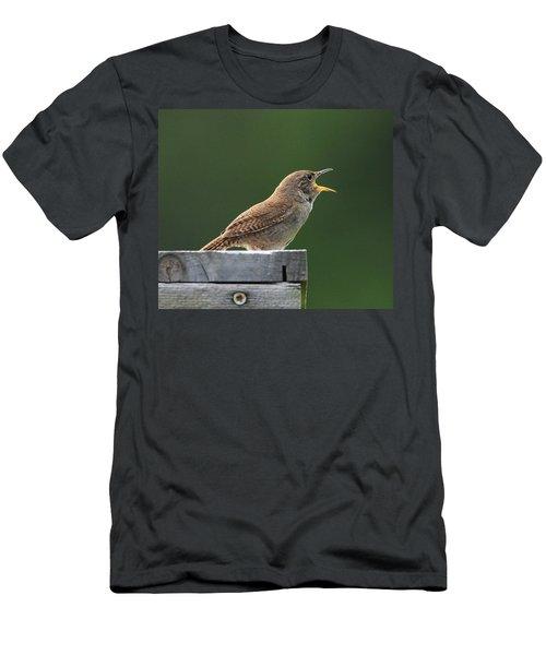 House Wren Stony Brook New York Men's T-Shirt (Slim Fit) by Bob Savage
