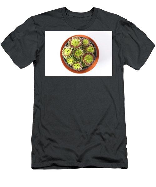 Houseleek Men's T-Shirt (Athletic Fit)