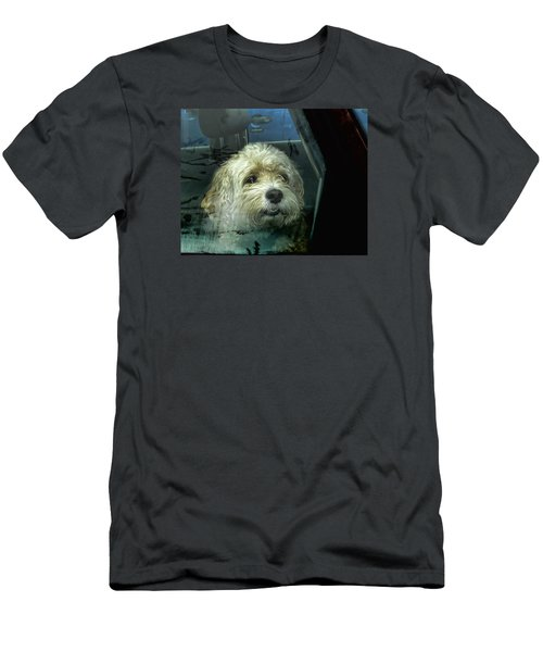 How Much Is That Doggie In The Window Men's T-Shirt (Athletic Fit)