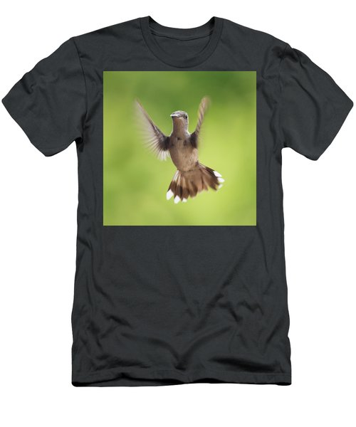 Hummingbird Hello There Men's T-Shirt (Athletic Fit)