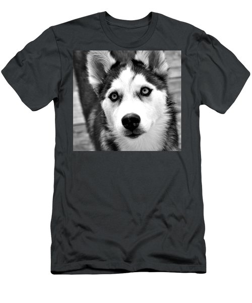 Husky Pup Men's T-Shirt (Slim Fit) by Sumit Mehndiratta
