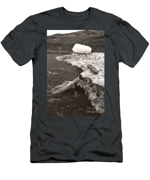 Iceberg Silo Men's T-Shirt (Athletic Fit)