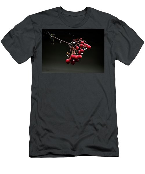 Iced Crab Apples Men's T-Shirt (Athletic Fit)