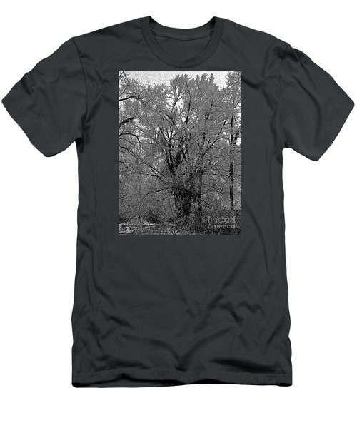 Iced Tree Men's T-Shirt (Slim Fit) by Craig Walters