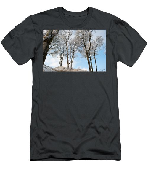 Icy Trees Men's T-Shirt (Athletic Fit)