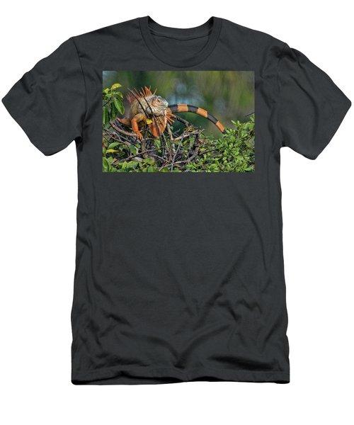 Iggy Men's T-Shirt (Slim Fit) by Don Durfee