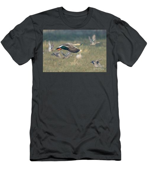 Indian Spot-billed Duck 01 Men's T-Shirt (Athletic Fit)