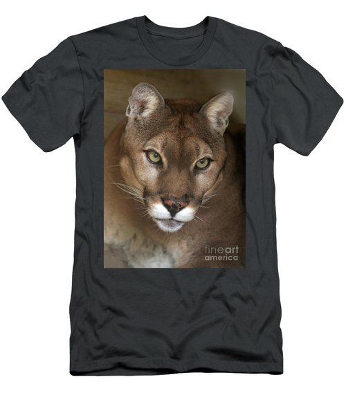 Intense Cougar Men's T-Shirt (Athletic Fit)
