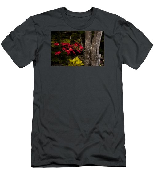 Men's T-Shirt (Slim Fit) featuring the photograph Intensity by Chad Dutson