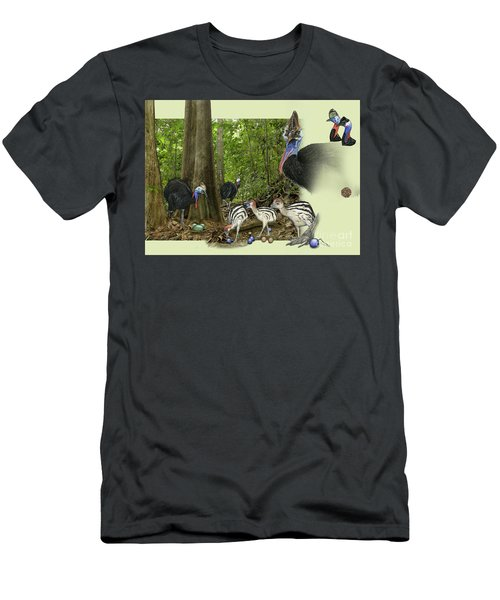 Zoo Nature Interpretation Panel Cassowaries Blue Quandong Men's T-Shirt (Athletic Fit)