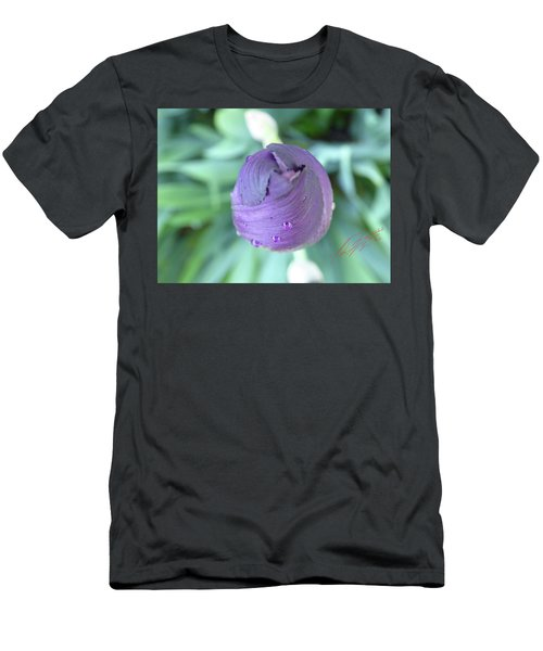 Iris After The Rain Vi Men's T-Shirt (Athletic Fit)